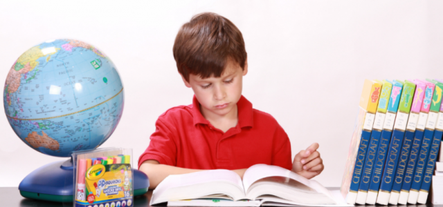 boy-with-a-red-shirt-reading-a-book