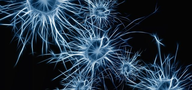 neurons-image